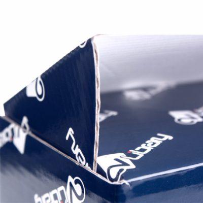 Custom Printed Gloss Mailing Box