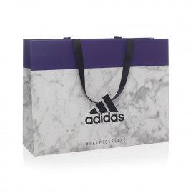 Custom Printed Ribbon Handle Paper Bag